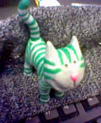 January's cat